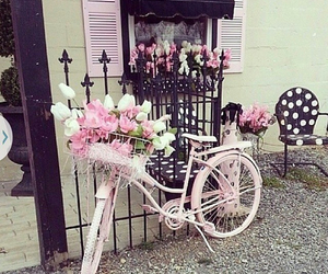 bike, black, and pink image