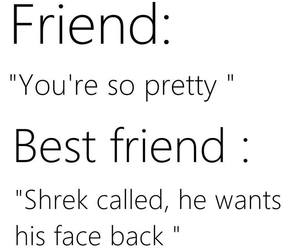 friends, bff, and shrek image