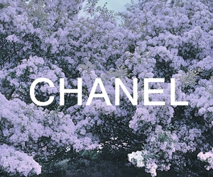 chanel, flowers, and purple image