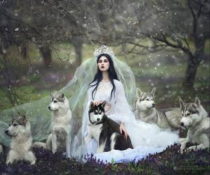 wolf, Queen, and princess image