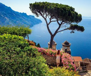 flowers, italy, and summer image