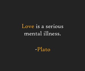 quotes, love, and plato image