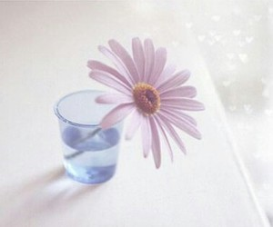flor, vaso, and flores image