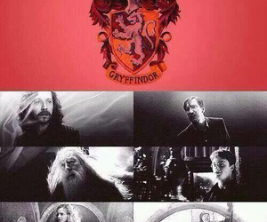 harry potter, gryffindor, and hp image