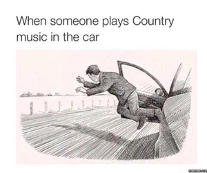 funny and country music image
