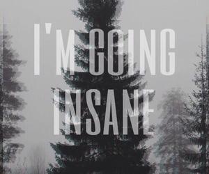 insane, grunge, and crazy image