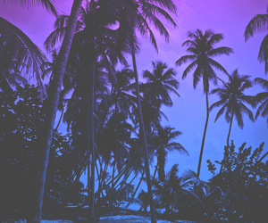 beach, purple, and palm trees image