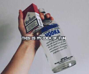 alcohol, fun, and funny image