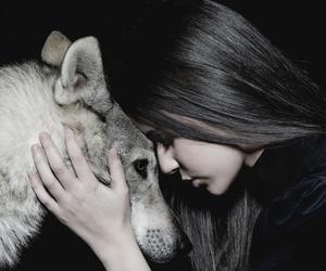 wolf, animal, and girl image