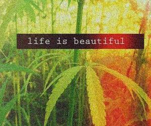 life, weed, and beautiful image