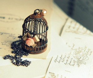 bird cage, cage, and flower image