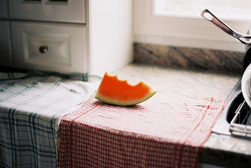vintage, photography, and watermelon image