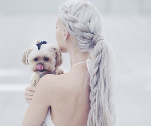 dog, fashion, and puppy image