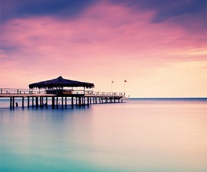 paradise, pink, and skyblue image