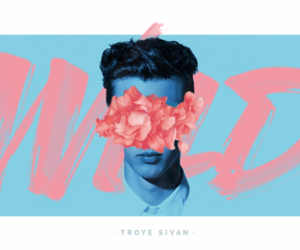 troye sivan, wild, and youtube image