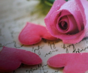 rose, love, and heart image
