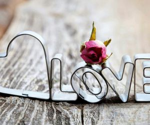 love, heart, and rose image
