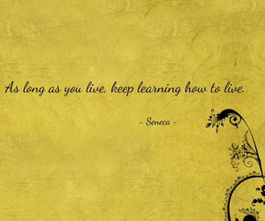 beautiful, learn, and life image