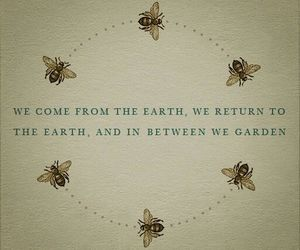 bees, quote, and love image