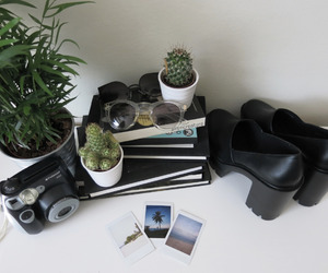 grunge, plants, and pale image