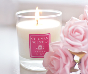 candle, pink, and rose image