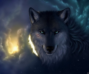 wolf and eyes image