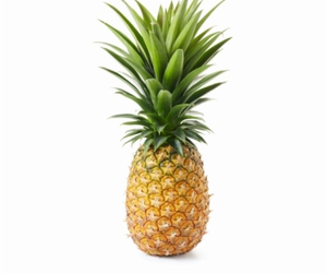 lol and pineapple image