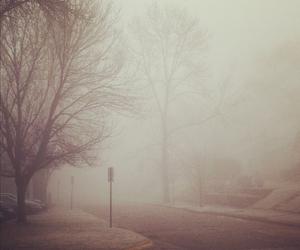fog, autumn, and trees image