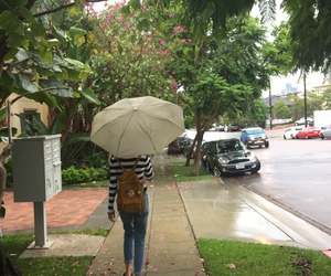 girl, rain, and indie image