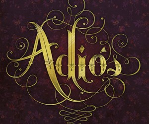 adios, text, and typography image