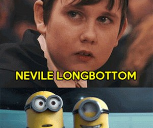 minions, funny, and harry potter image
