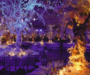 wedding and winter image