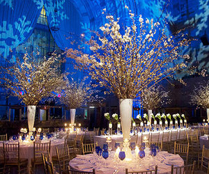 reception venue and snowflakes projections image
