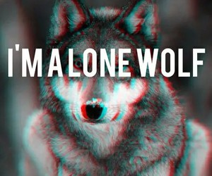 wolf, lone wolf, and loner image