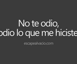 frases and odio image