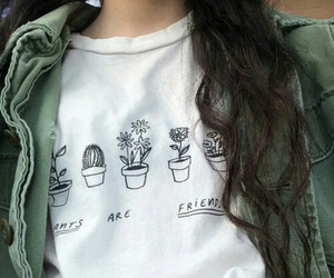 grunge, plants, and white image