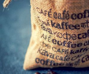 coffee, coffee beans, and java image