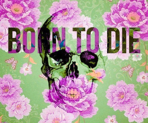 born to die, flowers, and die image