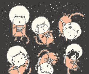 cat, space, and wallpaper image