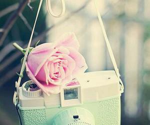 camera, rose, and vintage image