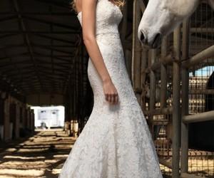 wedding, horse, and wedding dress image