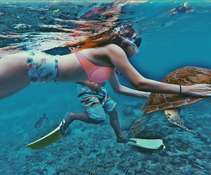 beach, blonde, and snorkeling image