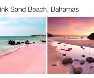 bahamas, beach, and nature image