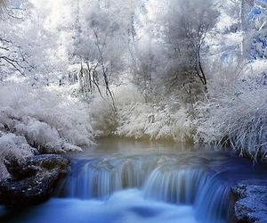 winter, nature, and landscape image