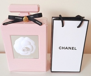 chanel, style, and chanel purfume image