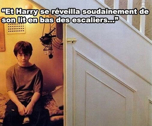 harry potter and reve image