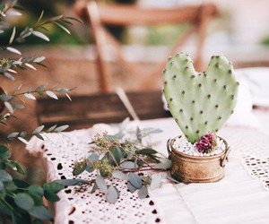 cacti, design, and flower image