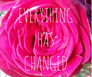 everything, quotes, and changed image