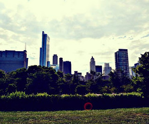 buildings, chicago, and photo image