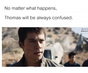 funny, maze runner, and dylan o'brien image
